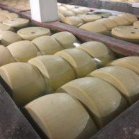 イタリアではチーズを担保に融資を受けられる