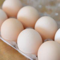 卵の大きさはニワトリの年齢に比例する